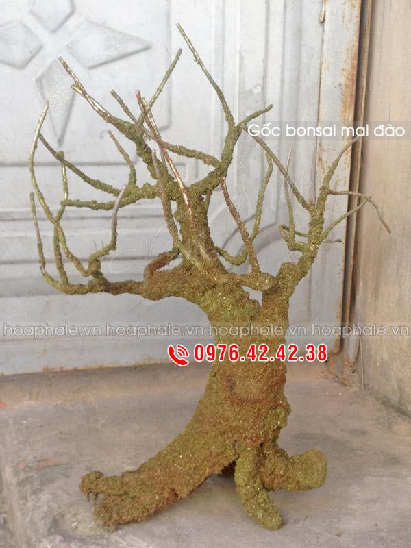 Gốc mai đào thế trực | Gốc bonsai mai đào thế trực