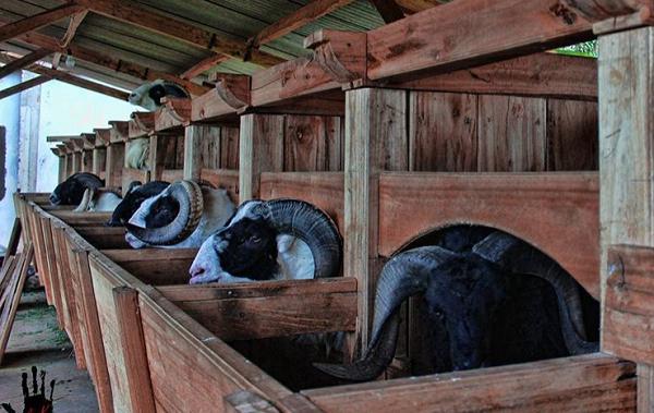 Tempat wisata di garut Desa Wisata Saung Ciburial