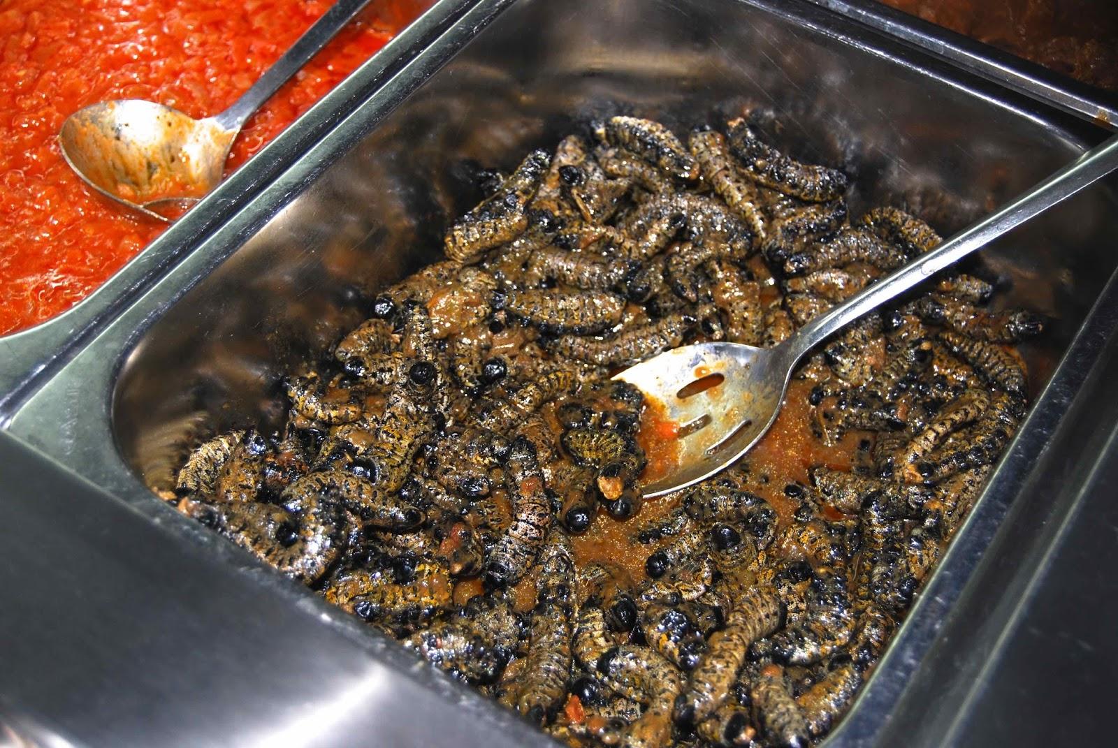 """Résultat de recherche d'images pour """"vers de mopane grillés"""""""