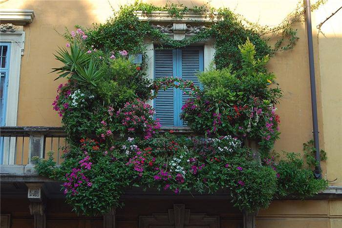 Beautiful Balcony Gardens - Kerala home design and floor plans
