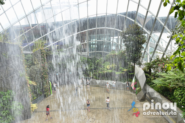 What to do in Singapore Gardens by the Bay Blog