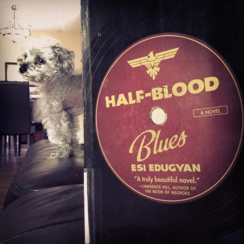 A trade paperback copy of Half-Blood Blues stands upright, so close to the camera that it takes up at least two thirds of the frame. The cover illustration is a record with the title printed on a burgundy centre circle. Behind the book, Murchie stands on a black leather couch, his face twisted into three quarter profile.