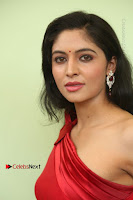 Actress Zahida Sam Latest Stills in Red Long Dress at Badragiri Movie Opening .COM 0087.JPG