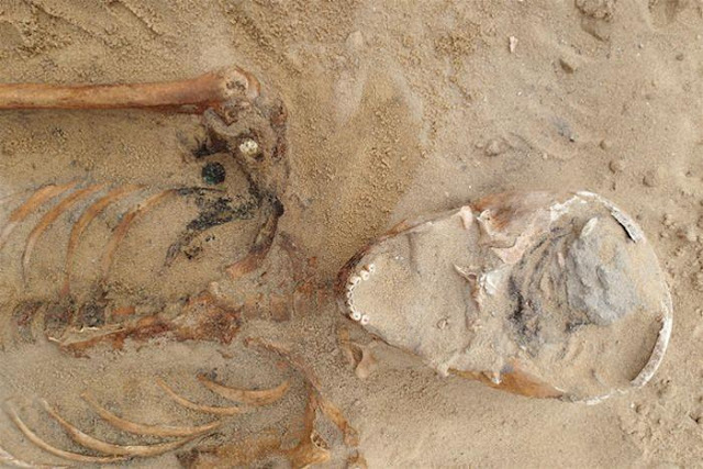 Seventeenth century plague victims discovered in Poland