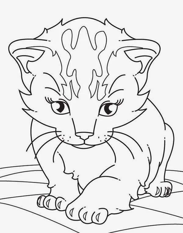 Navishta Sketch Sweet Cute Angle Cats