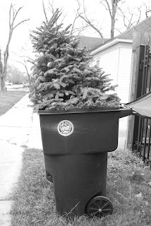throwing away Christmas trees in garbage can