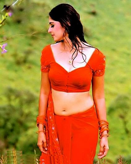 Anushka Hot Navel