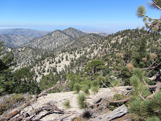 View northwest from the northwest summit of Mt. Williamson (8248') toward Pallet Mt. and Will Thrall Peak
