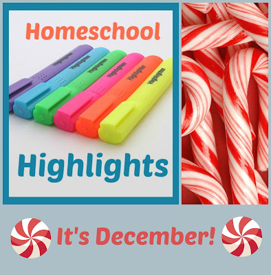 Homeschool Highlights - It's December! ~A weekly homeschool link-up hosted by Homeschool Coffee Break @ kympossibleblog.blogspot.com