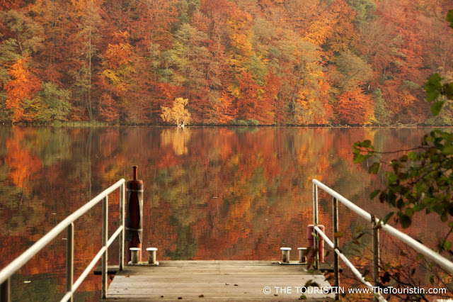 A pier on a lake surrounded by trees in red autumn foliage. Whole scene is reflected in the lake.