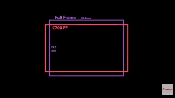 Сравнение сенсора Canon C700 FF и «полнокадрового» фотсенсора