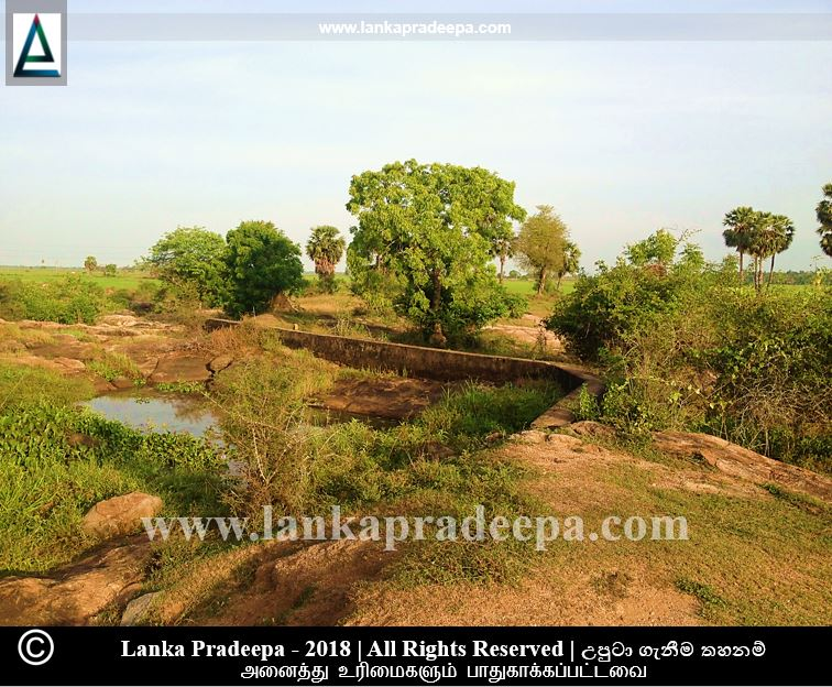 A view of Walathapitiya archaeological site