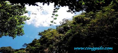 Gambar Pucok Krueng Tempat Indah Aceh Besar