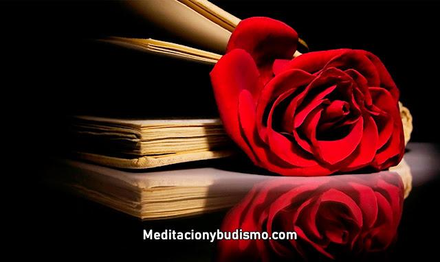 Poemas preciosos para la mujer