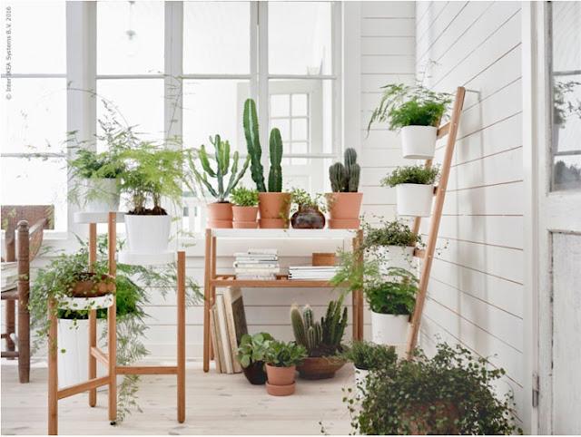 Indoor garden display from IKEA