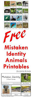 FREE Mistaken Identity Animal Printables