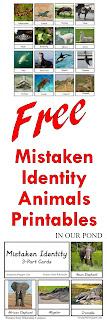 FREE Mistaken Identity Animal Printables