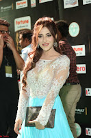 Angela Krislinzki in a lovely Neon Blue Skirt at IIFA Utsavam Awards 2017  Day 2  Exclusive 06.JPG