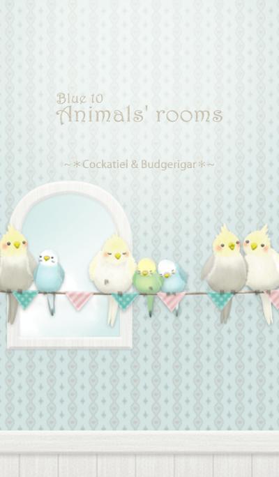 Animals' rooms[Cockatiel&budgie]/Blue 10