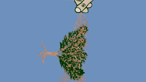 metodo-rapido-per-fabbricare-alberelli-in-scala