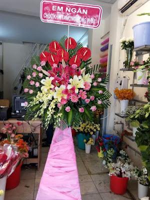 hoa khánh thành