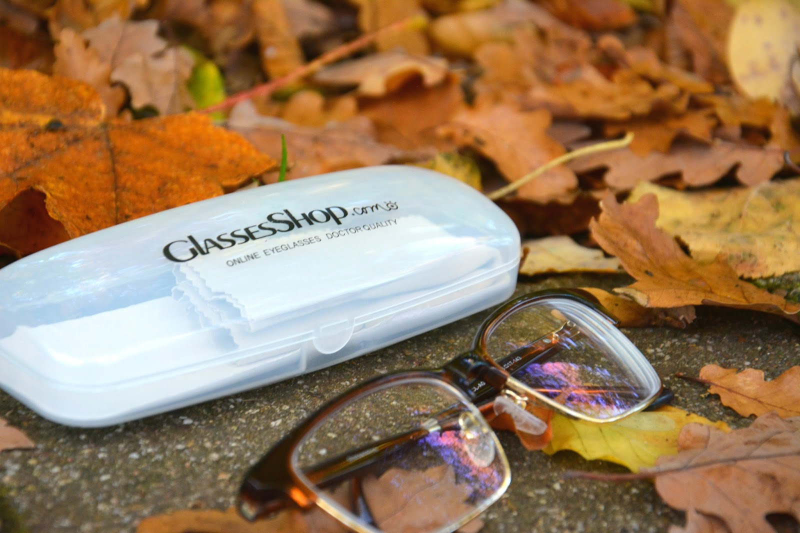 Clifford Wayfarer Glasses; GlassesShop.com; autumnal background