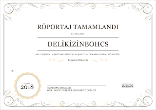 delikizinbohcs blog