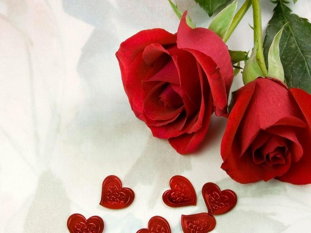 الورود