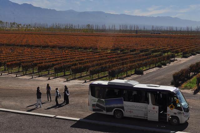 Bus Vitivinícola em vinícola em Mendoza, Argentina