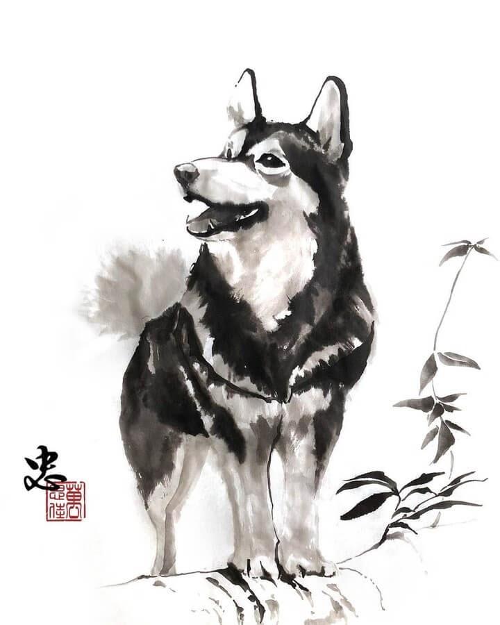 06-Siberian-Husky-Dirk-Swan-www-designstack-co