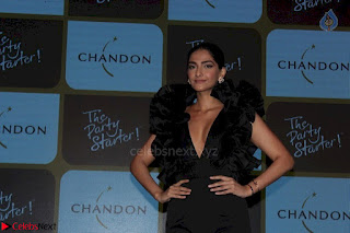 sonam kapoor at chandon the party starter 3rd March 2017 011.jpg