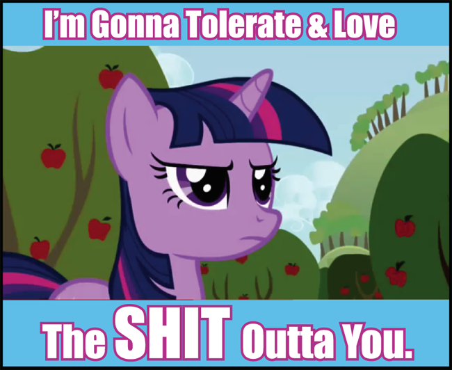 mlp+my+little+pony+meme+tolerate+shit+bronies.png