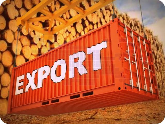 Tiga Perusahaan akan Ekspor 100 Kontainer Kayu Papua ke Tiongkok
