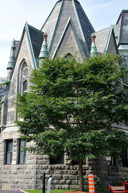 McGill Üniversitesi-Montreal