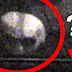 VERY SCARY! Alien Caught on Camera