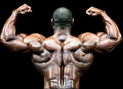 Aleda Costa Bodybuilder Back Images