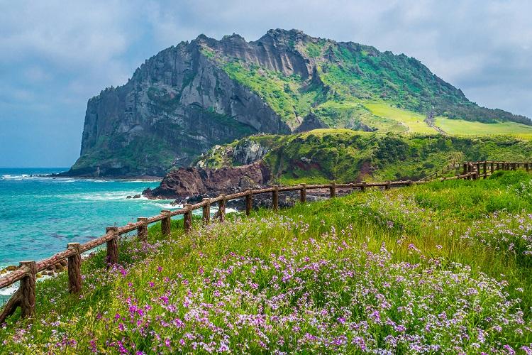 Cheju Do, Tempat Terindah dan Paling Aman di Korea Selatan
