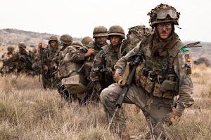 ¿Fuerzas militares, solución o conflicto?