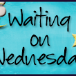 Waiting on Wednesday (13): Wild Cards by Simone Elkeles | Judith's Choice Reads