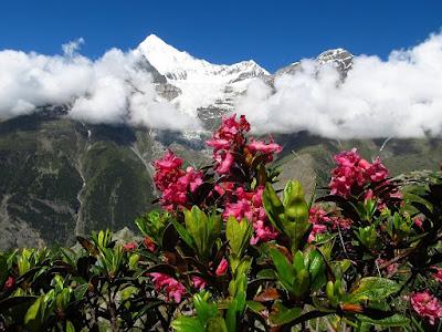 Tour de Monte Rosa zdjęcia