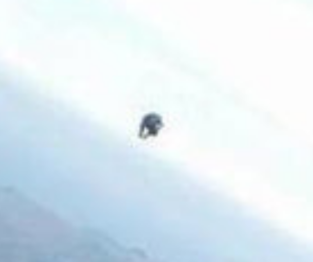 Hawke's Bay UFO as seen by a pilot over New Zealand.