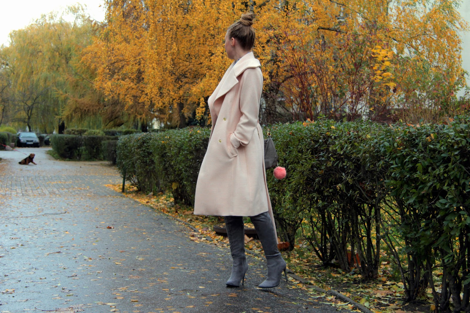 trend scanner over knee the boots
