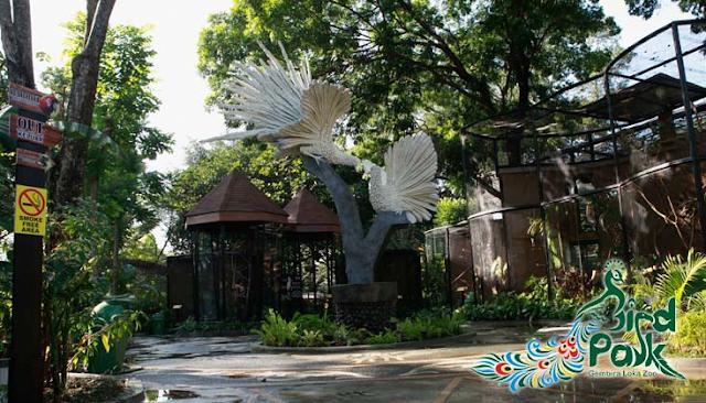 Tempat yang wajib di kunjungi di jogjakarta wisata kebun binatang gembira loka