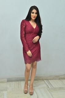Nikki Tamboli Chikati Gadilo Chithakotudu Movie Success Meet 5