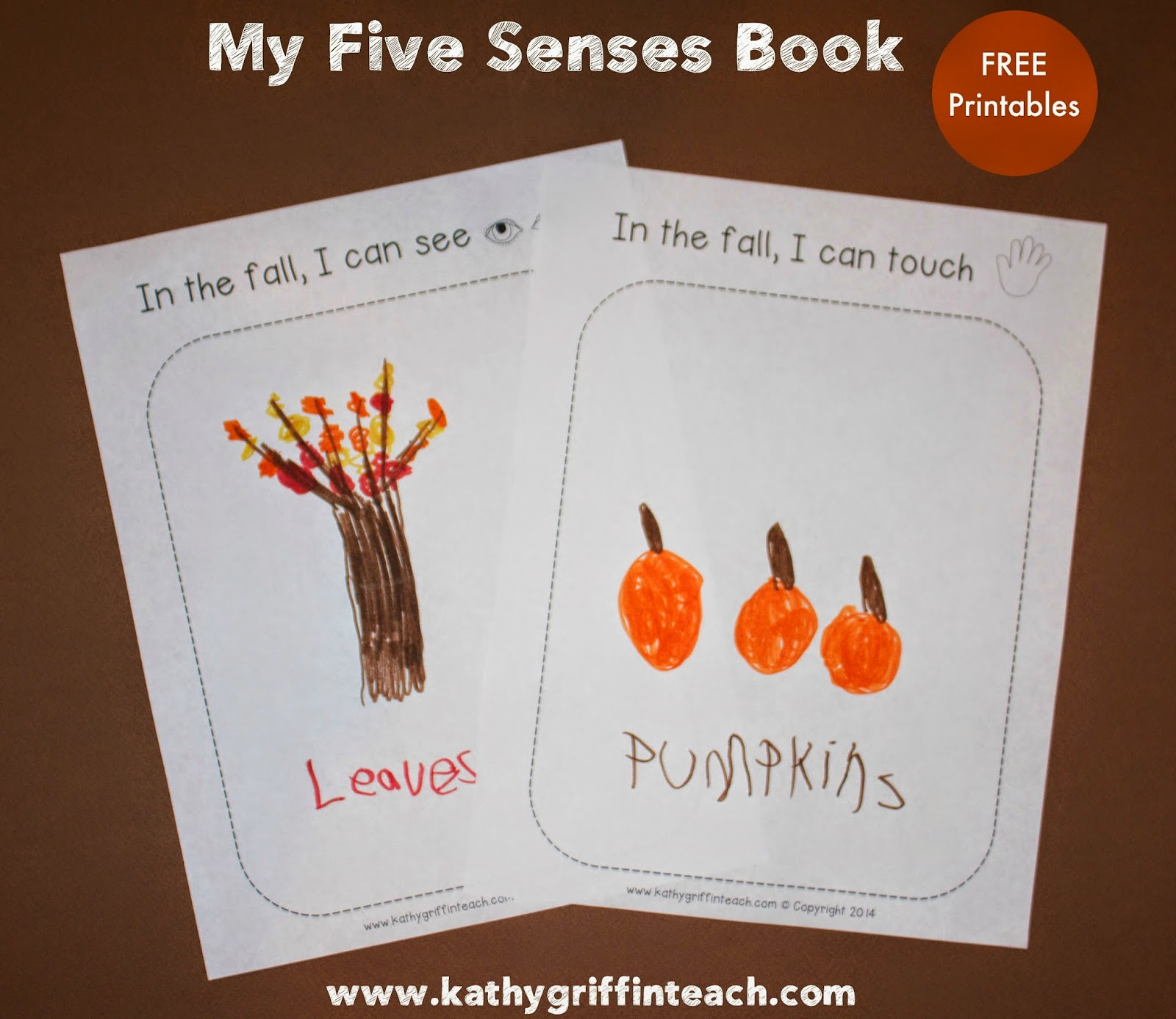 Kathy Griffin S Teaching Strategies Five Senses And Fall