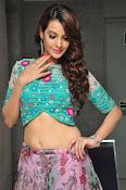Deeksha Panth New dazzling photos-thumbnail-7