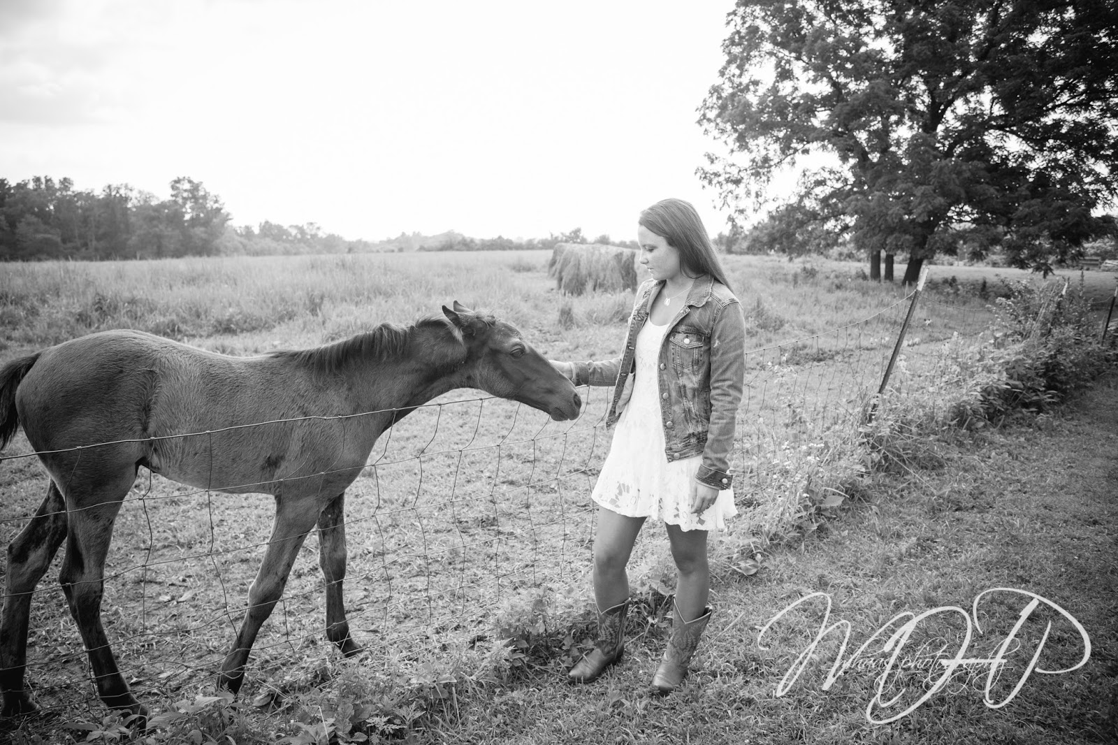 ©2015 MHaas Photography, senior portrait photographer, high school, senior pictures, louisville senior portrait photographer, horse, barn, rustic, cheerleader, Blackacre, farm, class of 2016, Assumption High School