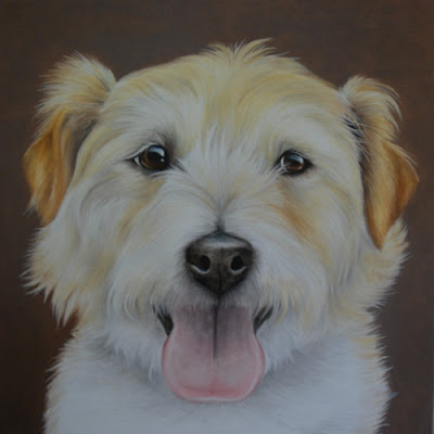 Pet Portrait Oil on Canvas Jack Russell Wire Haired