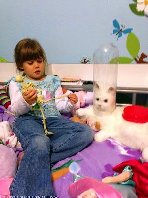 Lustige Katze neben Kind - Was hat die Katze auf dem Kopf?