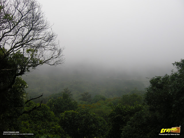 A view from Talakaveri road in Bhagamandala at Coorg, Kodagu district, Karnataka